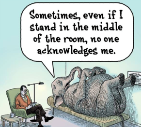 elephant-in-the-room-2 (2)